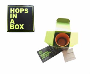 pot in a box